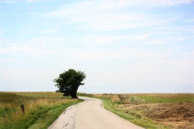 Open road 3769160815